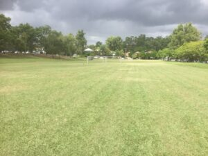 William Dart Park sportsfields to be acquired by UQ. Photo taken before the redevelopment.