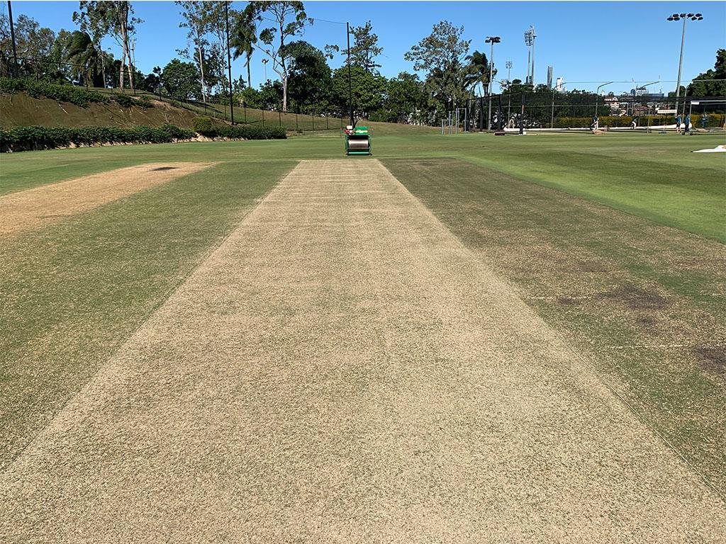 Cricket Australia Hybrid Wickets -